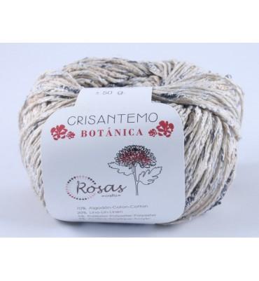 Crisantemo Botánica